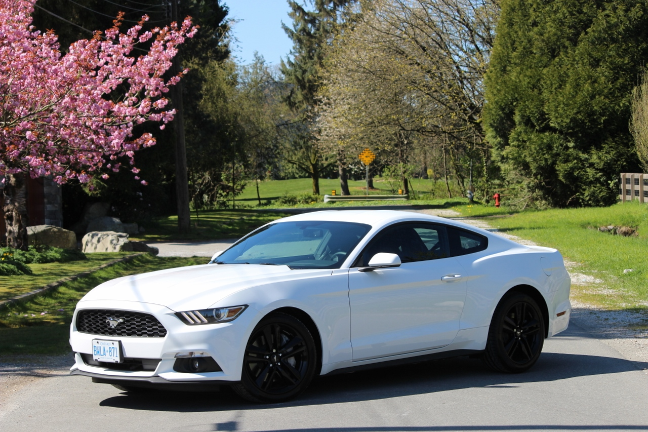review 2015 ford mustang ecoboost ecolodriver. Black Bedroom Furniture Sets. Home Design Ideas